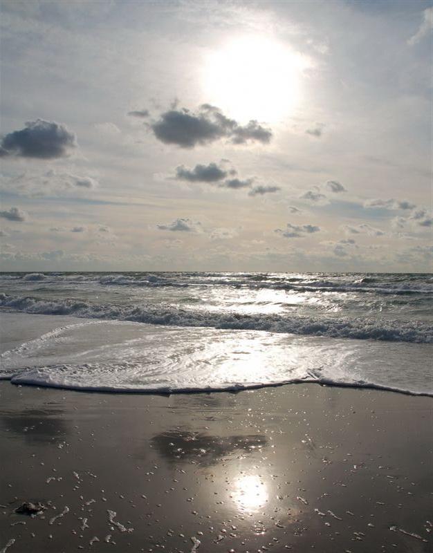 Берег моря фотографии 2